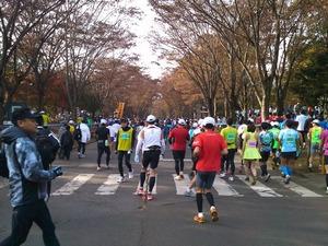 31st_tsukubamarathon_000