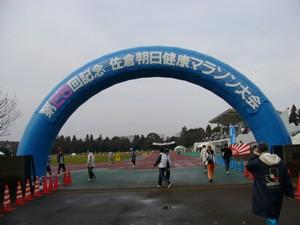 25th_sakura002